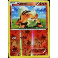 Caninos Carte Reverse Commune Pv 70 - 10/122 - XY9